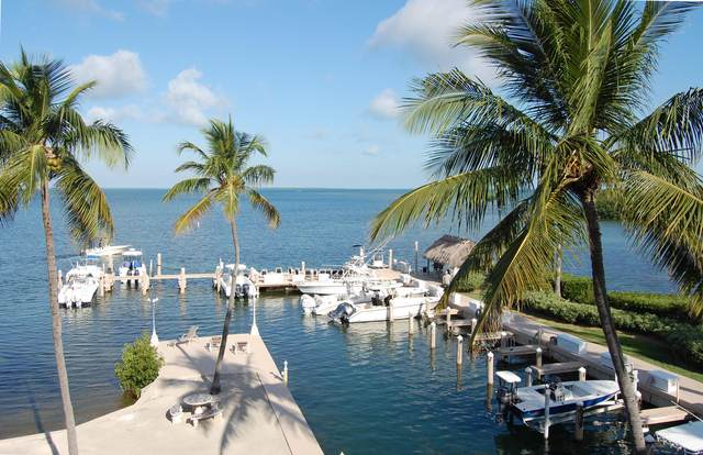 94220 Overseas Highway 5E, Key Largo, FL 33070 (MLS #589854) :: Born to Sell the Keys