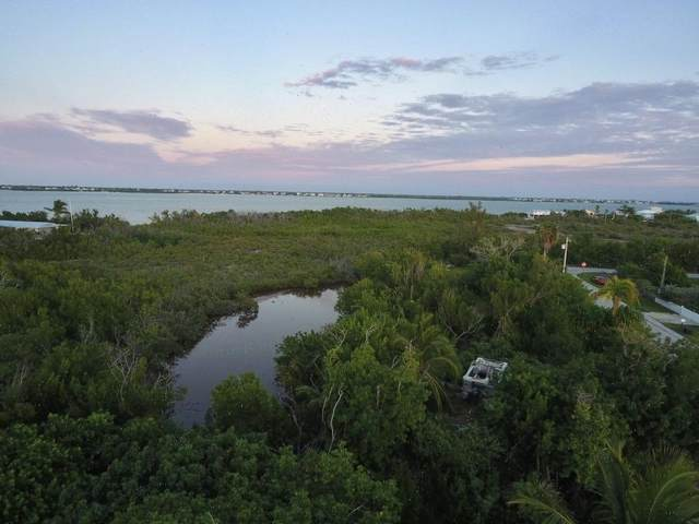 28269 Julia Avenue, Little Torch Key, FL 33042 (MLS #589969) :: Jimmy Lane Home Team