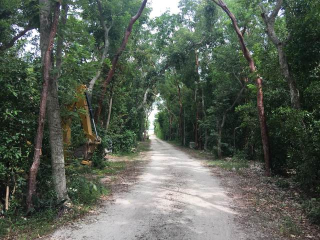 101650 Overseas Highway, Key Largo, FL 33037 (MLS #590234) :: Key West Luxury Real Estate Inc
