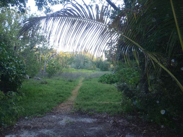 229 Coral Road, Plantation Key, FL 33036 (MLS #590423) :: Born to Sell the Keys