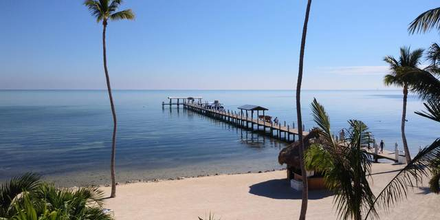 81801 Overseas Highway 742 & 743, Upper Matecumbe Key Islamorada, FL 33036 (MLS #590718) :: Born to Sell the Keys