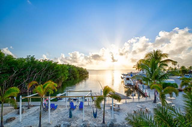 325 Calusa Street #6, Key Largo, FL 33037 (MLS #591069) :: Born to Sell the Keys