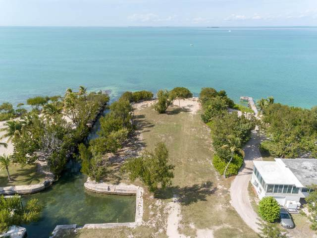 75996 Overseas Highway, Lower Matecumbe, FL 33036 (MLS #591120) :: Born to Sell the Keys