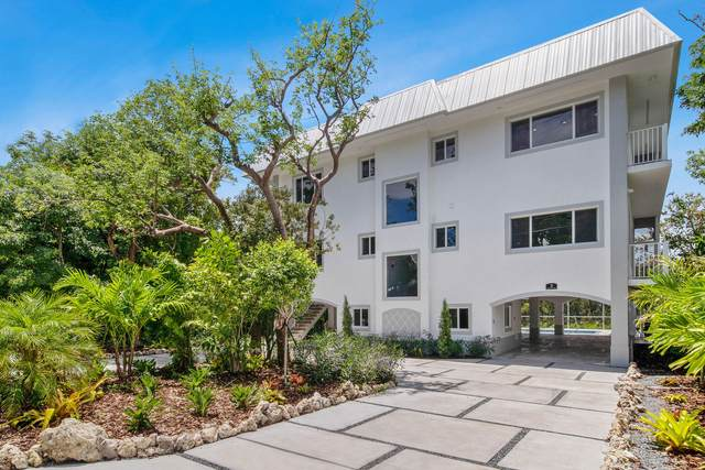 3 Flamingo Hammock Road, Upper Matecumbe Key Islamorada, FL 33036 (MLS #591331) :: Brenda Donnelly Group