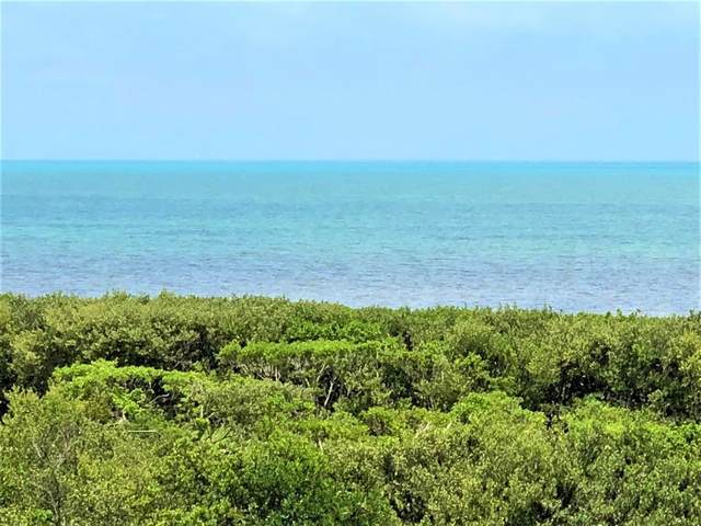 500 Burton Drive #3307, Key Largo, FL 33070 (MLS #591370) :: Coastal Collection Real Estate Inc.