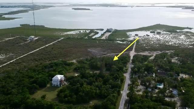 19088 Pellico Rd Road, Sugarloaf Key, FL 33042 (MLS #591676) :: Key West Luxury Real Estate Inc