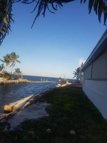 31587 Avenue D, Big Pine Key, FL 33043 (MLS #591909) :: Jimmy Lane Home Team
