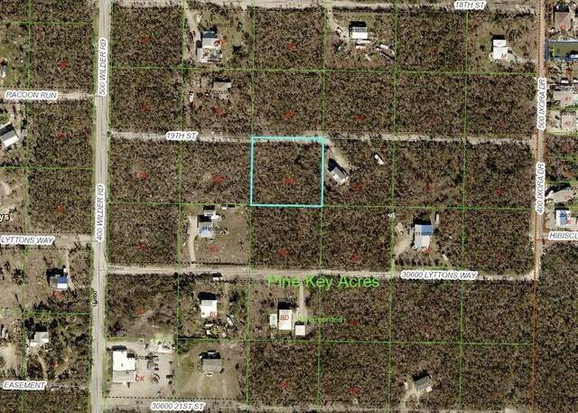 Tract BB 14Th Street, Big Pine Key, FL 33043 (MLS #592054) :: Jimmy Lane Home Team