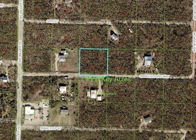 Tract BC Lyttons Way, Big Pine Key, FL 33043 (MLS #592055) :: Jimmy Lane Home Team