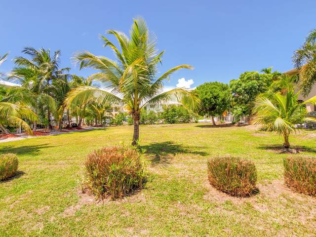 Saratoga Avenue, Big Pine Key, FL 33043 (MLS #592222) :: Infinity Realty, LLC