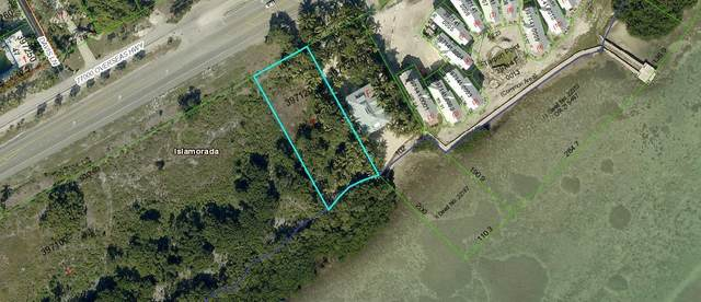 77481 Overseas Hwy, Lower Matecumbe, FL 33036 (MLS #592282) :: Born to Sell the Keys
