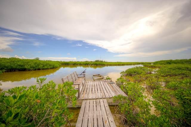 19052 Mad Bob Road, Sugarloaf Key, FL 33042 (MLS #592474) :: Coastal Collection Real Estate Inc.
