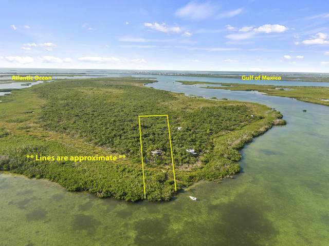 Lot 4 Little Knock Em Down, Summerland Key, FL 33042 (MLS #592974) :: Infinity Realty, LLC