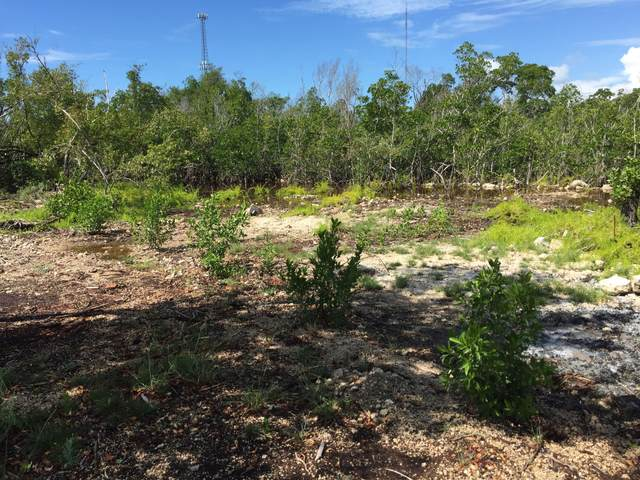 26868 Mariposa Road, Ramrod Key, FL 33042 (MLS #593095) :: KeyIsle Realty