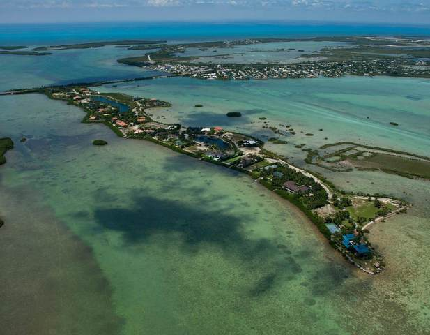 67 Cannon Royal Drive, Shark Key, FL 33040 (MLS #593321) :: Expert Realty