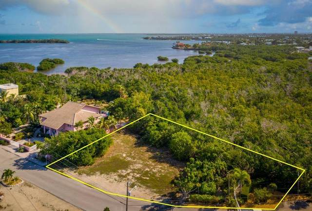 199 Stirrup Key Boulevard, Marathon, FL 33050 (MLS #593769) :: Jimmy Lane Home Team