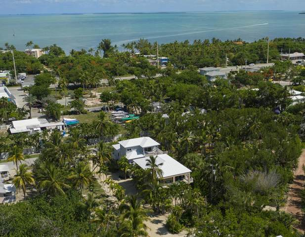 191 Carroll Street, Upper Matecumbe Key Islamorada, FL 33036 (MLS #594200) :: Jimmy Lane Home Team