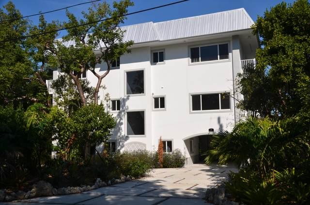 3 Flamingo Hammock Road, Upper Matecumbe Key Islamorada, FL 33036 (MLS #594476) :: Jimmy Lane Home Team