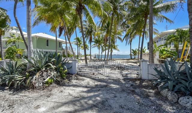 191 La Fitte Road, Little Torch Key, FL 33042 (MLS #594728) :: Jimmy Lane Home Team