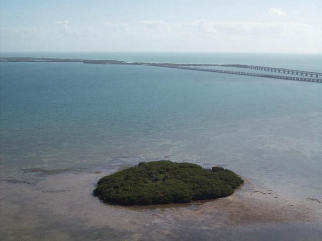 99 Don Quixote Key #0, Big Pine Key, FL 33043 (MLS #594746) :: Key West Luxury Real Estate Inc