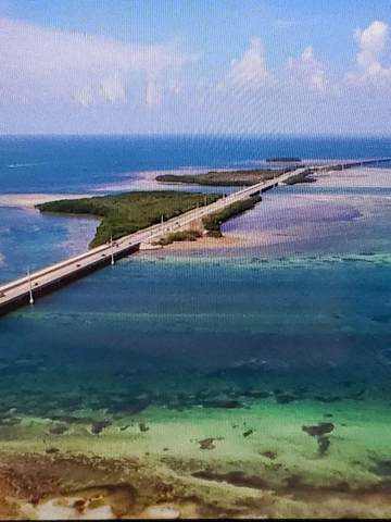 Missouri Overseas Highway, Big Pine Key, FL 33043 (MLS #594785) :: Brenda Donnelly Group
