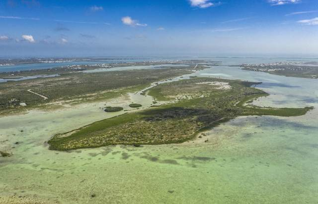 Middle Torch Road, Middle Torch Key, FL 33042 (MLS #594820) :: Jimmy Lane Home Team