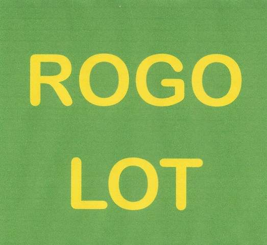 Lot 20 Aloha Drive, Little Torch Key, FL 33042 (MLS #595090) :: The Mullins Team