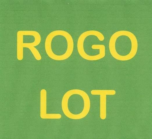 Lot 21 Aloha Drive, Little Torch Key, FL 33042 (MLS #595091) :: Jimmy Lane Home Team
