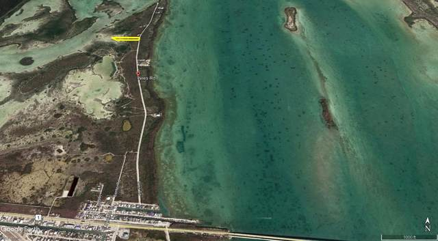 551 Niles Road, Summerland Key, FL 33042 (MLS #595106) :: KeyIsle Group