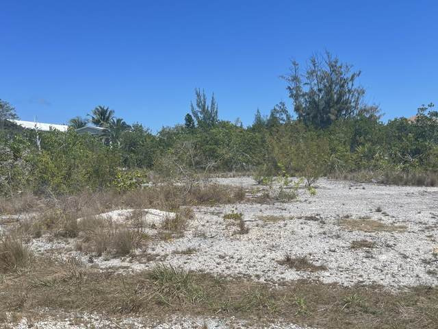 161 Horvath Road, Big Pine Key, FL 33043 (MLS #595335) :: Jimmy Lane Home Team