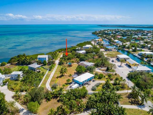 165 Colson Drive, Cudjoe Key, FL 33042 (MLS #595545) :: Jimmy Lane Home Team