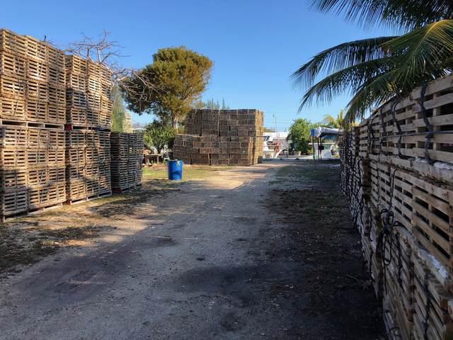 29505 Lucrecia Street, Big Pine Key, FL 33043 (MLS #595630) :: Coastal Collection Real Estate Inc.