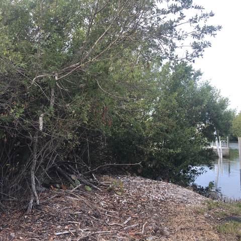 29196 Allamanda Lane, Big Pine Key, FL 33043 (MLS #595635) :: The Mullins Team