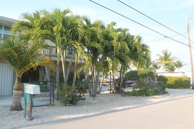 28231 Linda Street, Little Torch Key, FL 33042 (MLS #595683) :: Key West Luxury Real Estate Inc