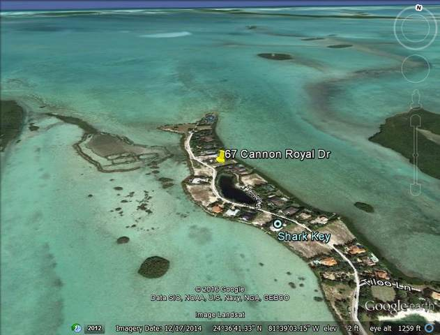 67 Cannon Royal Drive, Shark Key, FL 33040 (MLS #595707) :: Keys Island Team
