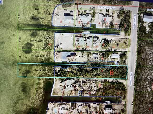 660 Elma Avenue, Big Pine Key, FL 33043 (MLS #595744) :: The Mullins Team