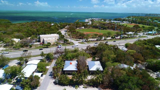 86771 Overseas Highway, Plantation Key, FL 33036 (MLS #595908) :: Jimmy Lane Home Team