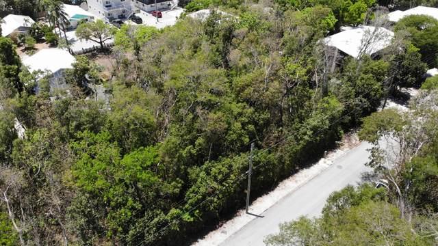 133 Indian Avenue, Key Largo, FL 33070 (MLS #596055) :: KeyIsle Group