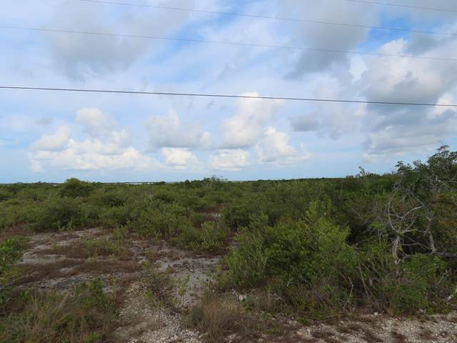 550 Middle Torch Road, Middle Torch Key, FL 33042 (MLS #596261) :: KeyIsle Group