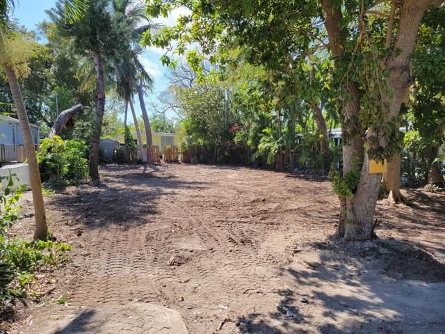 229 Cuba Road, Key Largo, FL 33070 (MLS #596681) :: Jimmy Lane Home Team
