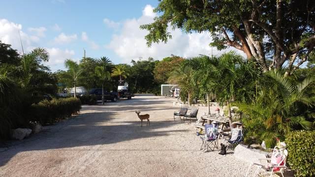 Watson Boulevard, Big Pine Key, FL 33043 (MLS #596691) :: Keys Island Team