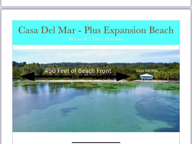 Salt Creek Bastimentos, Other, FL 00000 (MLS #597182) :: Brenda Donnelly Group