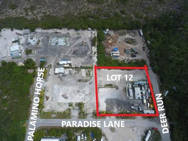 30230 Paradise Lane, Big Pine Key, FL 33043 (MLS #597183) :: Brenda Donnelly Group