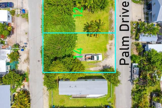 Palm Drive, Saddlebunch, FL 33040 (MLS #597202) :: KeyIsle Group