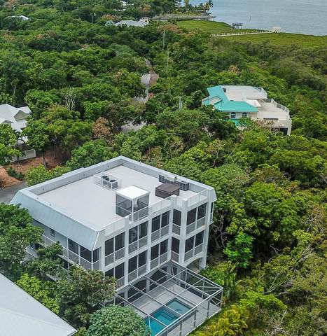 3 Flamingo Hammock Road, Upper Matecumbe Key Islamorada, FL 33036 (MLS #597236) :: Infinity Realty, LLC