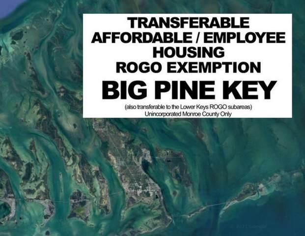 Affordable/ Employee Rogo, Big Pine Key, FL 33043 (MLS #597419) :: Keys Island Team