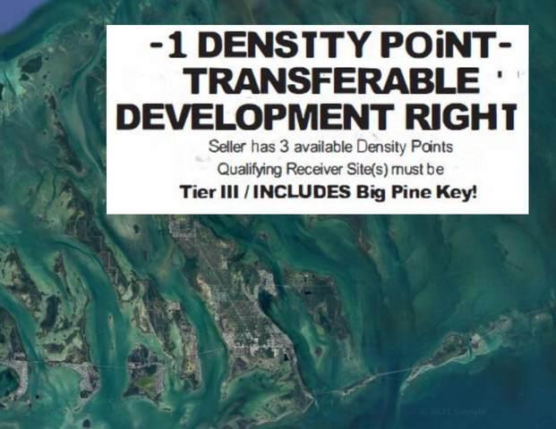 00 Density Right, Big Pine Key, FL 33043 (MLS #597424) :: Keys Island Team