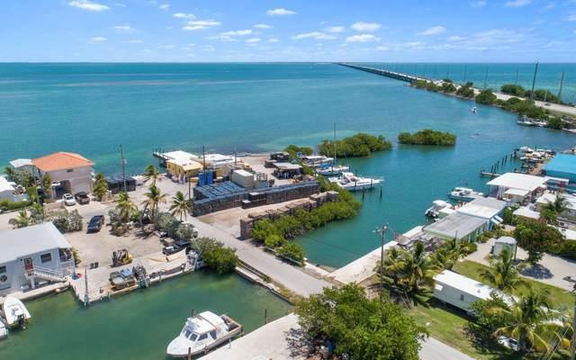 15 Seaview Avenue, Conch Key, FL 33050 (MLS #597432) :: KeyIsle Group
