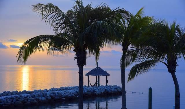69401 Overseas Highway #4, Long Key, FL 33001 (MLS #597742) :: BHHS- Keys Real Estate