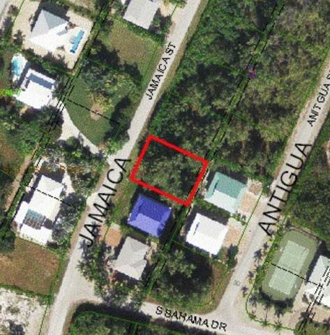 20 Jamaica Street #20, Duck Key, FL 33050 (MLS #597797) :: Brenda Donnelly Group